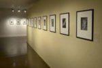 Promenades photographiques à la bibliothèque multimedia