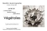 Juliette Diemer expose du 3 au 15 mars à l'espace Maurice Béjart de Verneuil sur seine